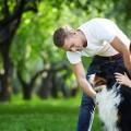 Как уговорить купить собаку