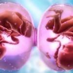 Многоплодная беременность при искусственном зачатии
