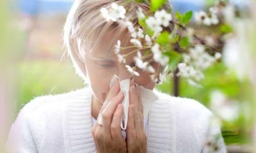 Пищевая аллергия отпуск
