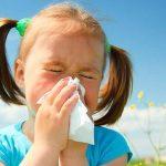 Аллергия грозит превратиться в эпидемию