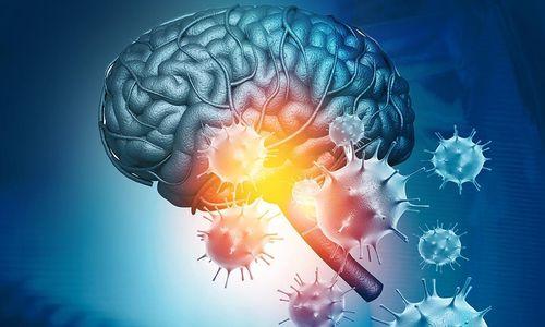 Влияние коронавируса на мозг